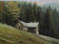 Ostravice- Gabrielka kol.r.1910